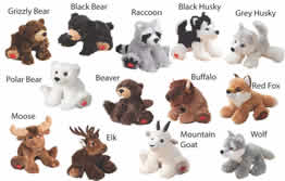 "Maplefoot Floppies SPECIAL OFFER - Buy 4 books, get a Maplefoot Floppy Critter for $0.01! With every fourth book purchased choose an adorable 7"" Floppy Critter ($10.00 value) to be shipped with your books for only one penny more.  Choose from the following:Beaver, Black Bear, Black Husky, Buffalo, Elk, Mountain Goat, Grey Husky, Grizzly Bear, Moose, Polar Bear, Raccoon (pre-orders only), Red Fox, Wolf, along with an alternate selection (in case your first choice is out of stock from our manufacturer) and add to cart below. Must be ordered before books have been shipped."
